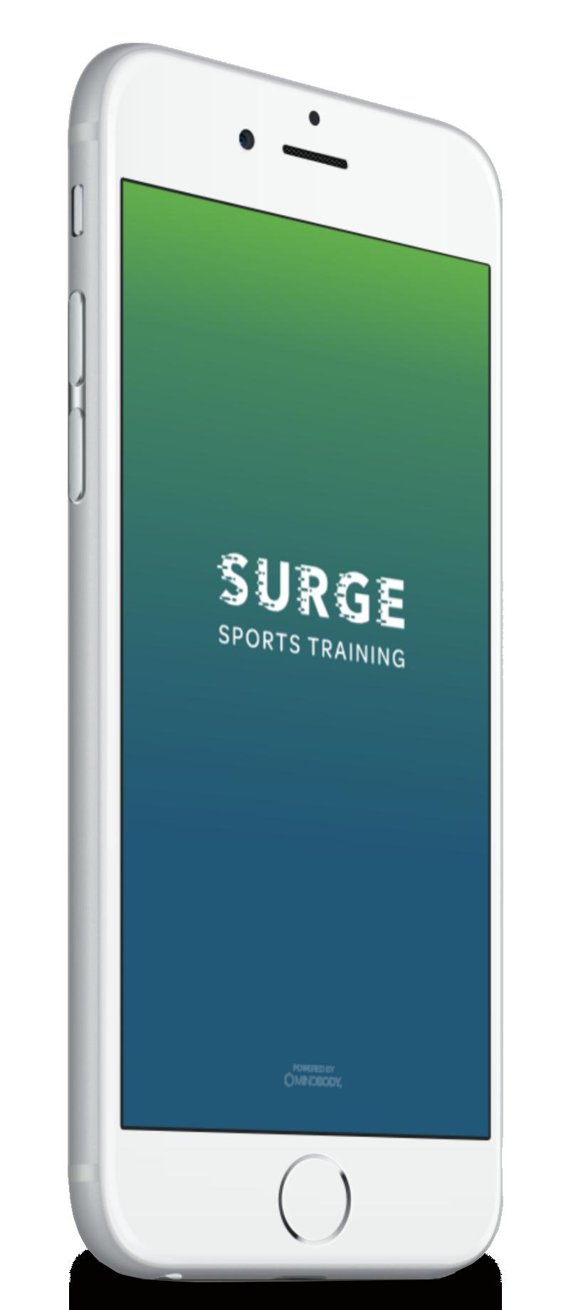 surge sports training level take